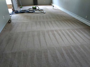 Carpet-Cleaning10