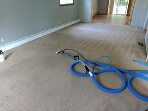 Carpet-Cleaning11