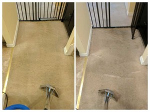 Carpet-Cleaning9